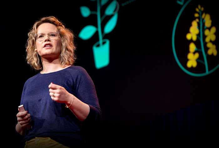 The next software revolution: programming biological cells | Sara-Jane Dunn