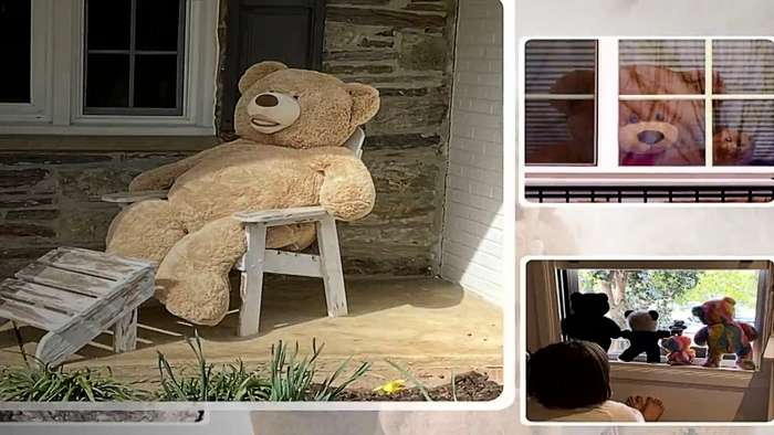 Teddy bear hunt goes viral