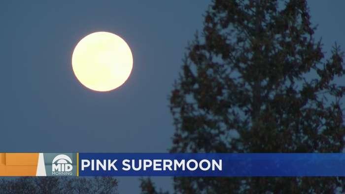 Last Night's Pink Moon Caught On Camera