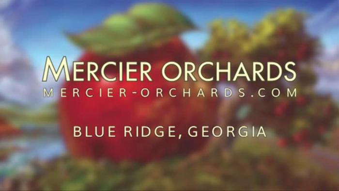 Mercier Orchards in Blue Ridge,GA talks about surviving the lockdowns