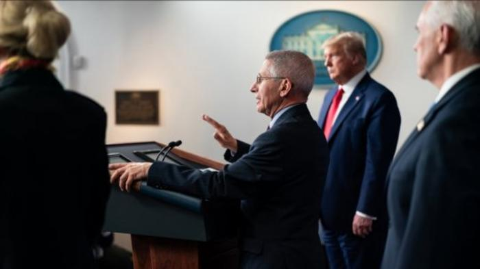 Majority Back Dr. Fauci's Response to COVID-19, 27 Points More Than President Trump