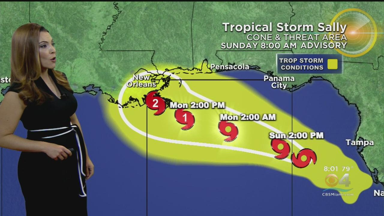 Tracking Tropical Storm Sally 9-13-20 8AM - One News Page ...Hurricane Sally