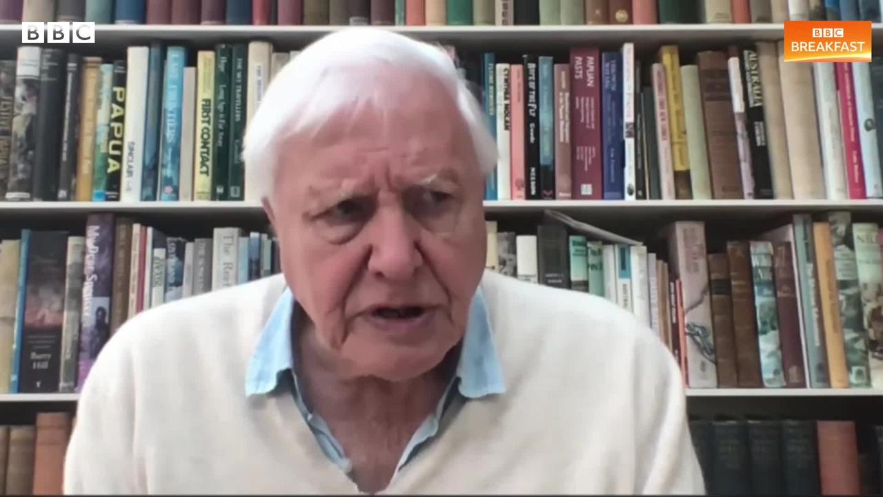 Sir David Attenborough says Extinction Rebellion should be 'careful' with their disruptive methods