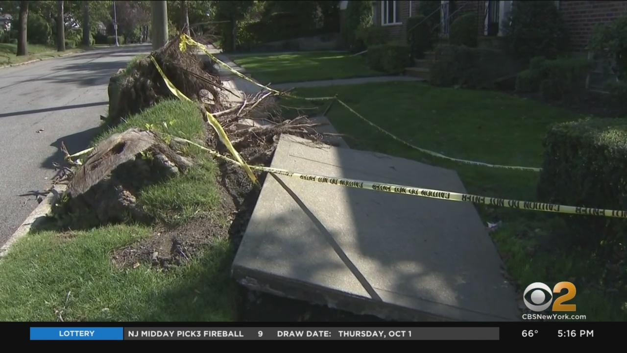 Demanding Answers: Queens Homeowners Still Waiting For City To Clean Up Damage From Tropical Storm Isaias