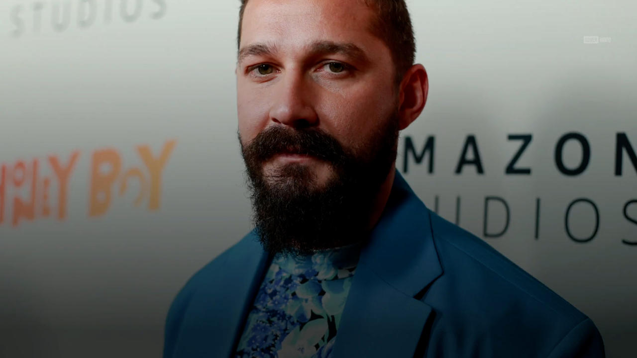 Shia LaBeouf charged with battery and petty theft
