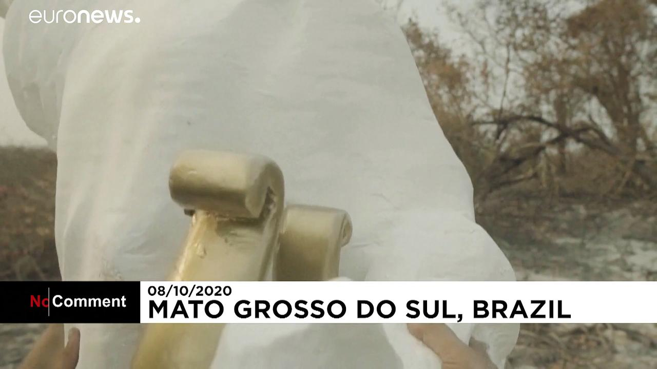 Greenpeace raises a statue of Brazil's Bolsonaro in burnt Pantanal wetlands