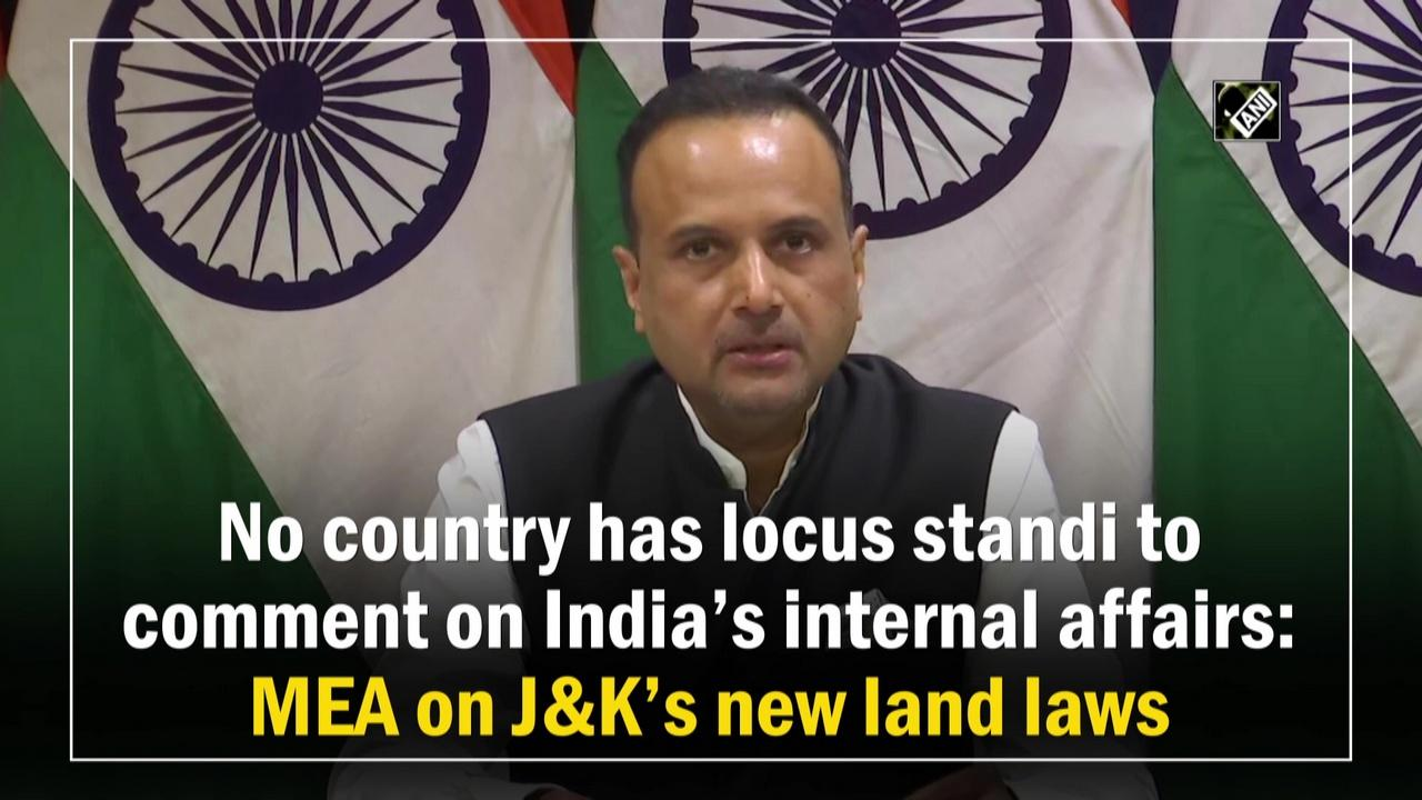 No country has locus standi to comment on India's internal affairs: MEA on JandK's new land laws