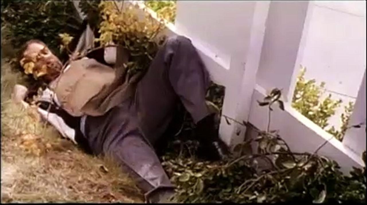 2 Days in the Valley Movie (1996) - Danny Aiello, Greg Cruttwell, Jeff Daniels, Teri Hatcher