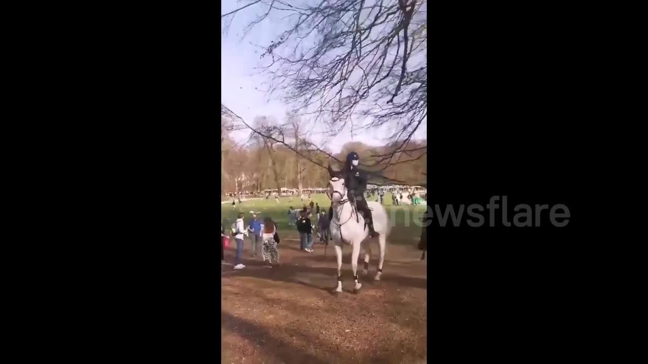 Belgian police on horseback disperse riot crowds at Brussels park