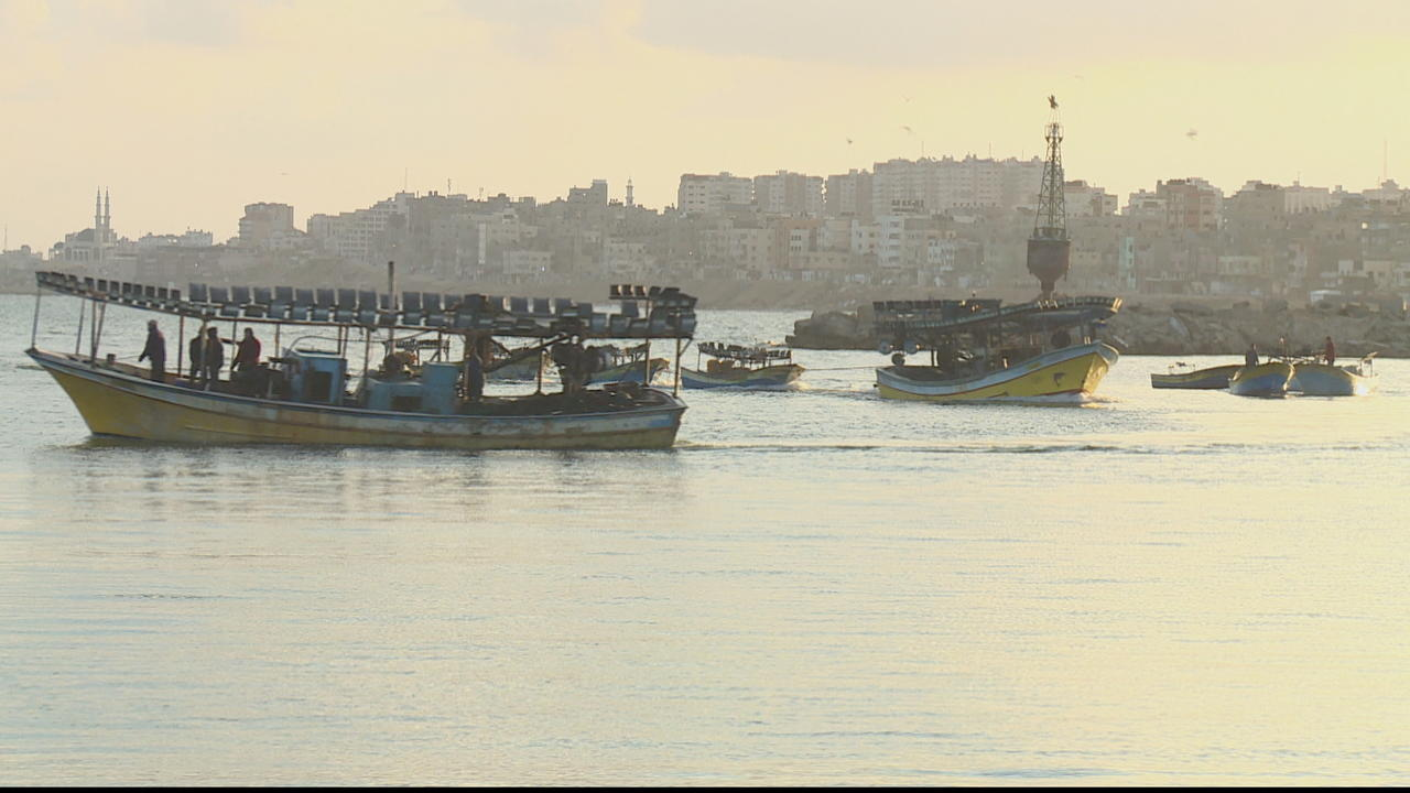 Farmers, fishers in Gaza struggle under COVID-19 restrictions