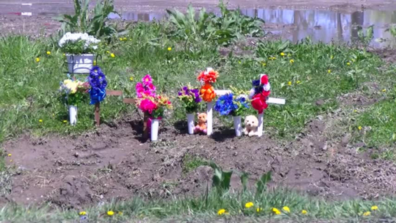 Outpouring of support for family of crash victims
