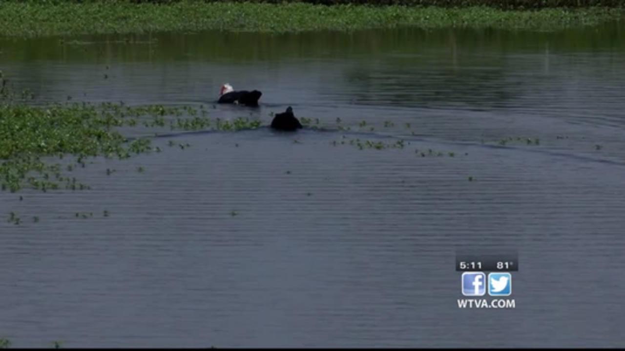 City receives grant to improve Legion Lake Park