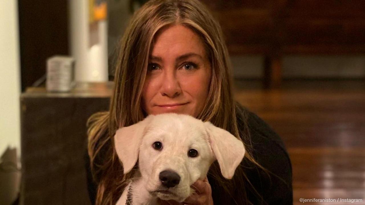 Jennifer Aniston dismisses adoption rumours