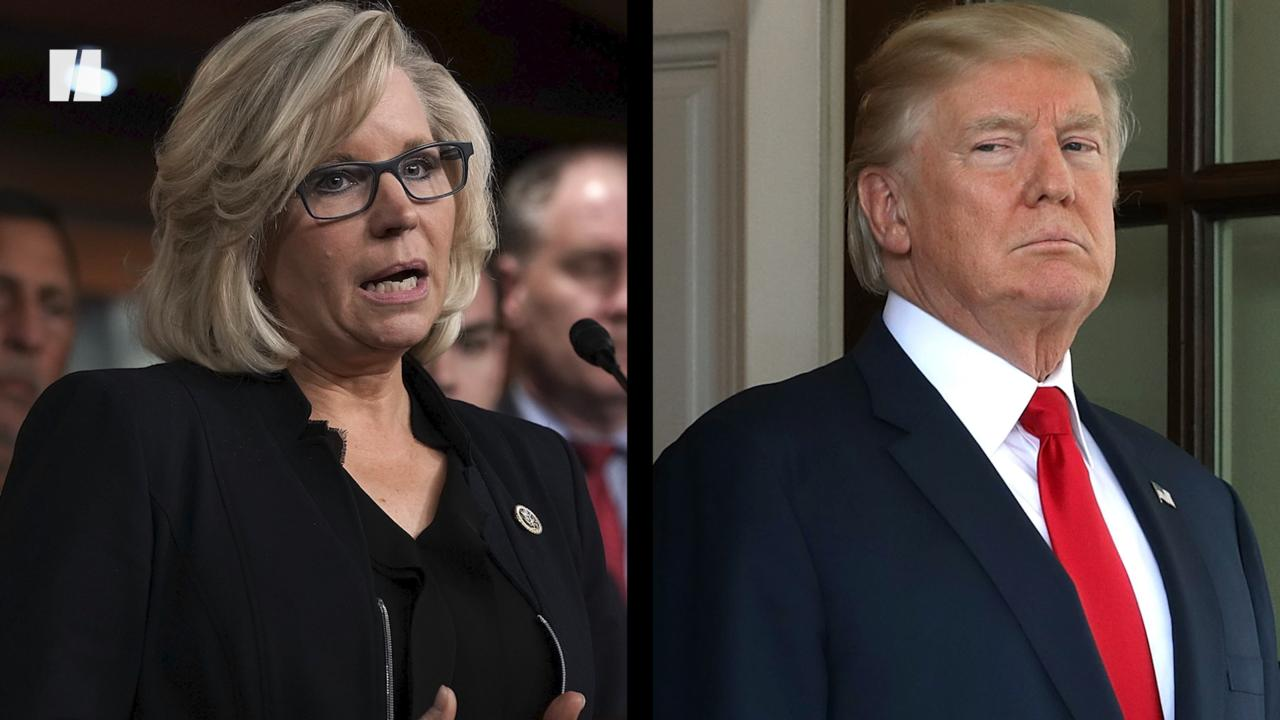 Liz Cheney Stumps Fox News