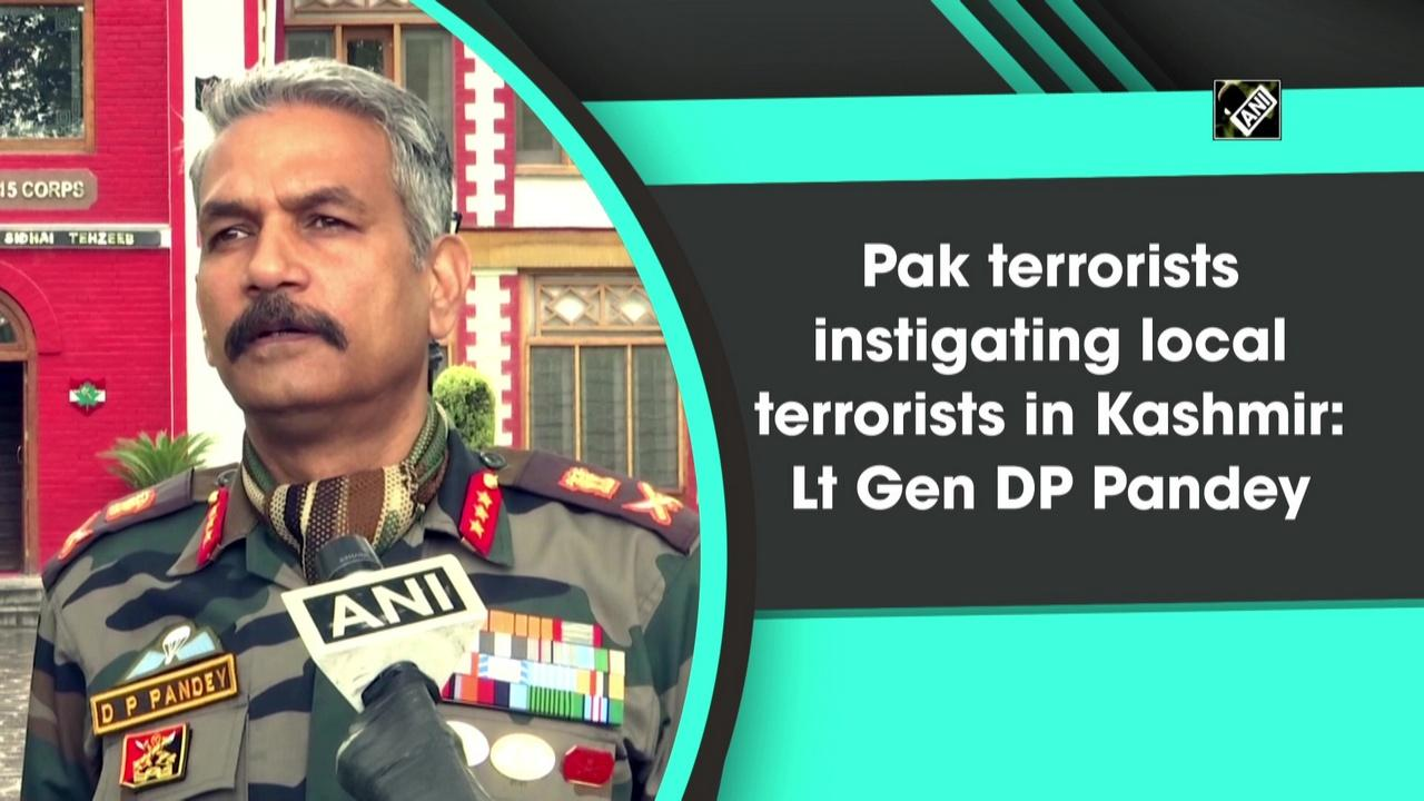 Pak terrorists instigating local terrorists in Kashmir: Lt Gen DP Pandey