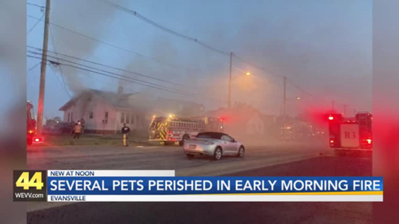 4 Cats Killed in Evansville House Fire
