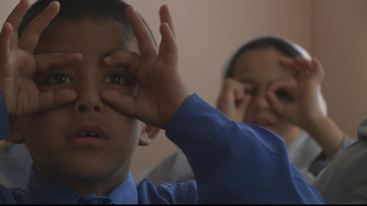 Afghanistan education: Lack of support for children with disabilities