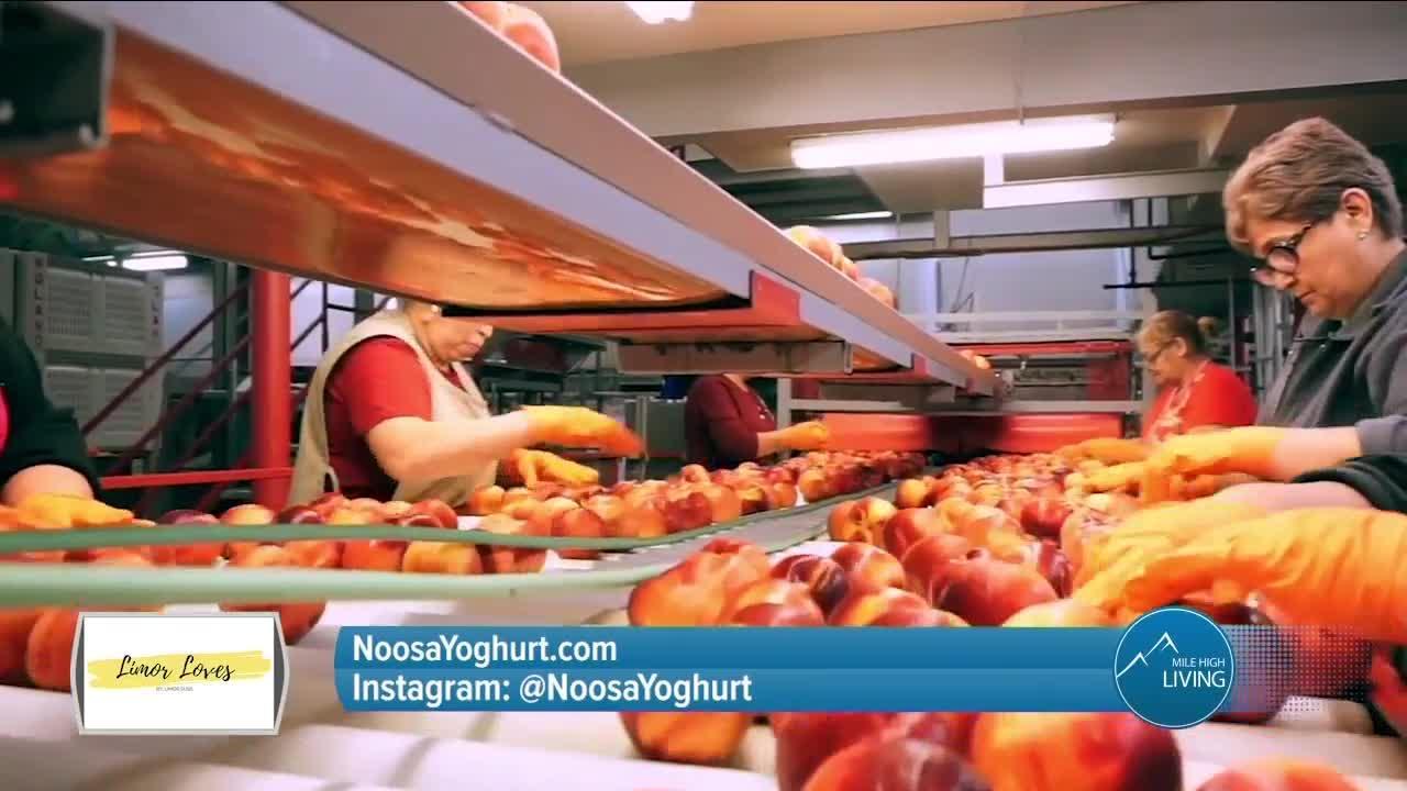 Made In Colorado! // Noosa Yoghurt