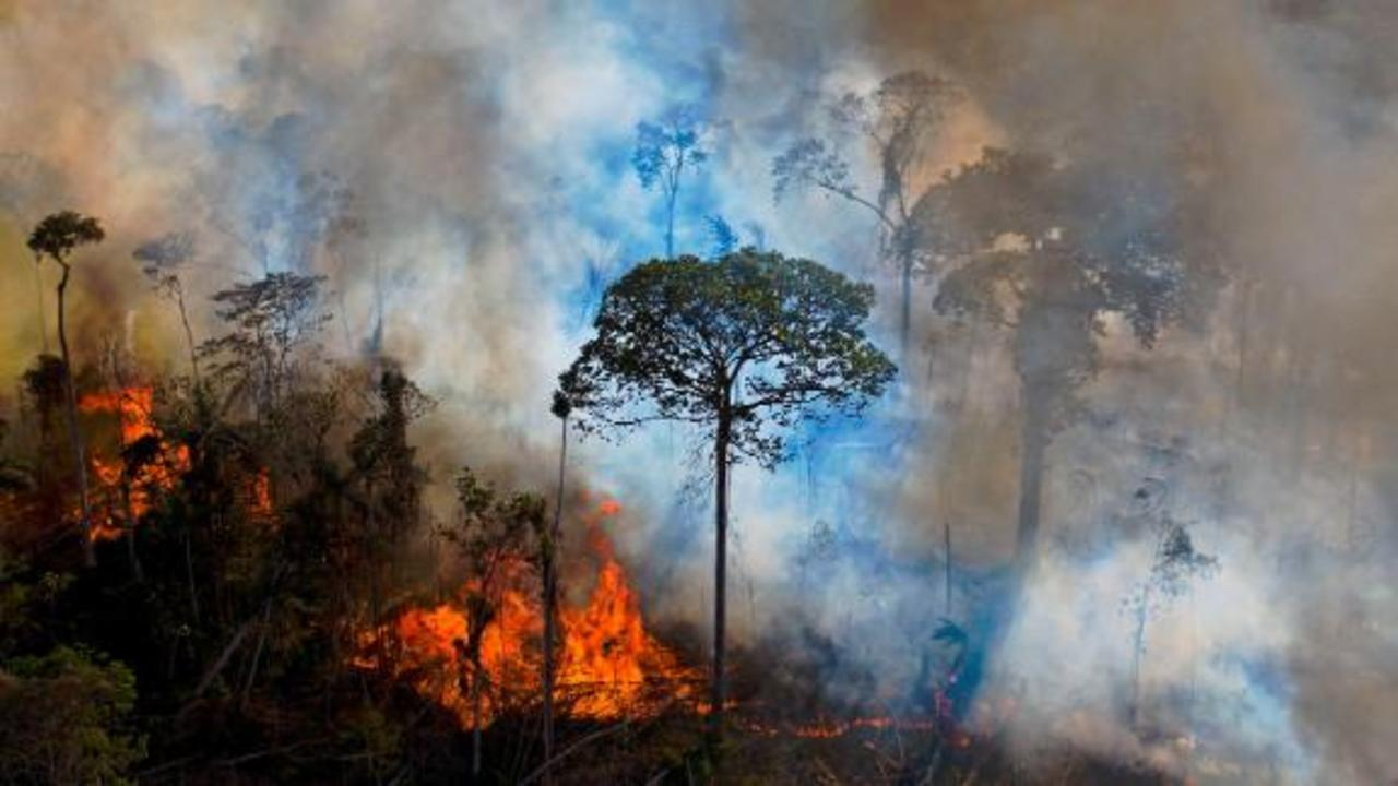 Brazil says it's ready to end deforestation in Amazon. But there's a price tag