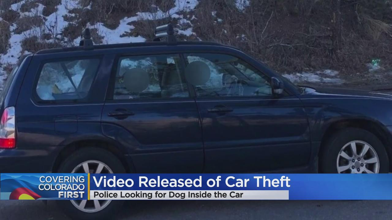 Police Release Images Of Suspects Who Stole Car, Dog