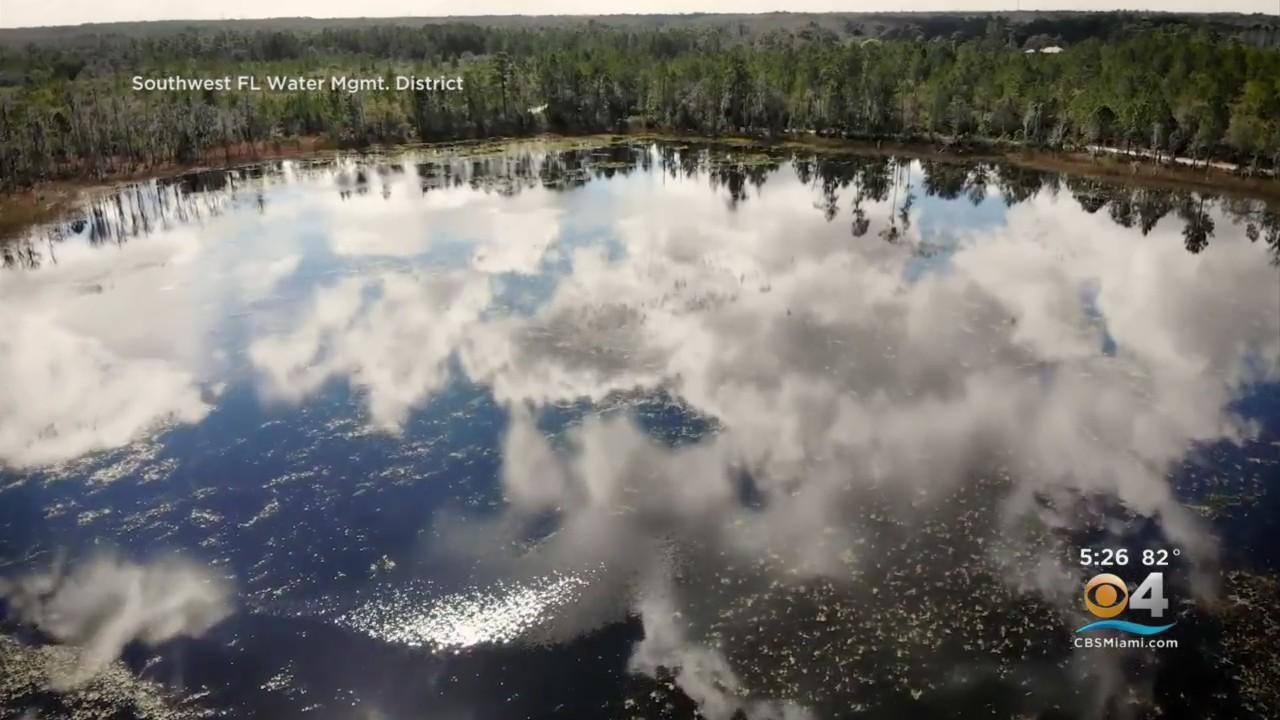 Florida's Water Restoration Efforts Seeing Positive Results