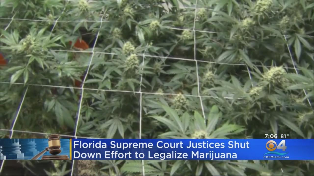 Florida Supreme Court Rejects Recreational Pot Amendment