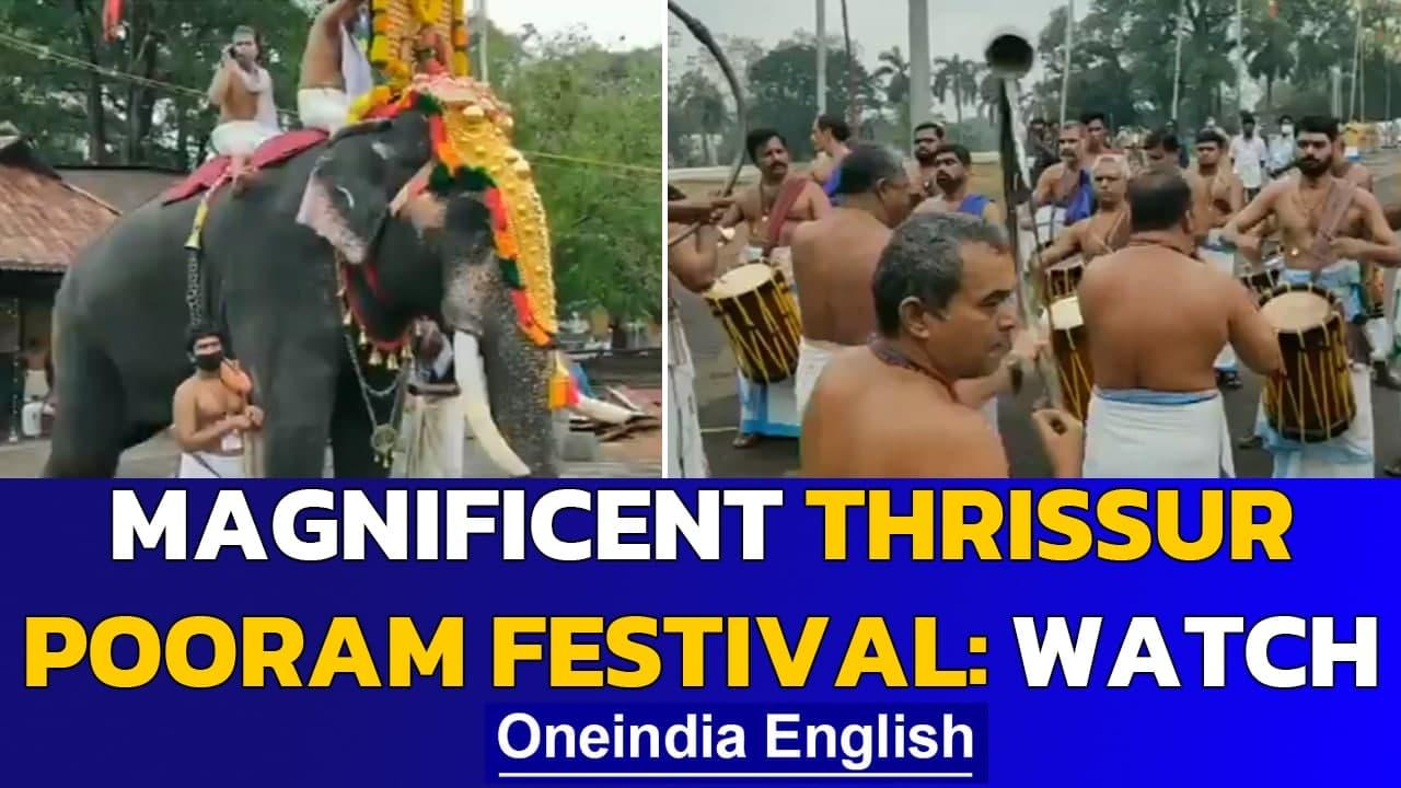 Thrissur Pooram festival is a feast for the eyes: Watch | Oneindia News