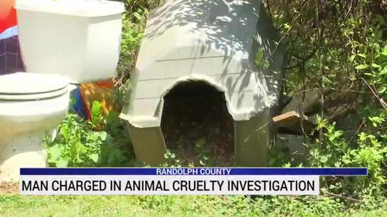 North Carolina family finds multiple dead dogs in tenant's home