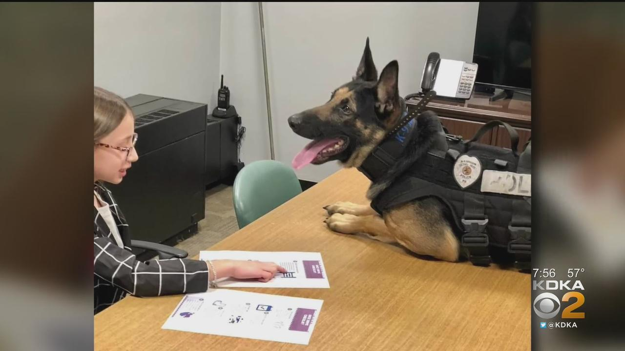Ambitious Fifth-Grader Teams Up With Police Dog To Make Big Difference