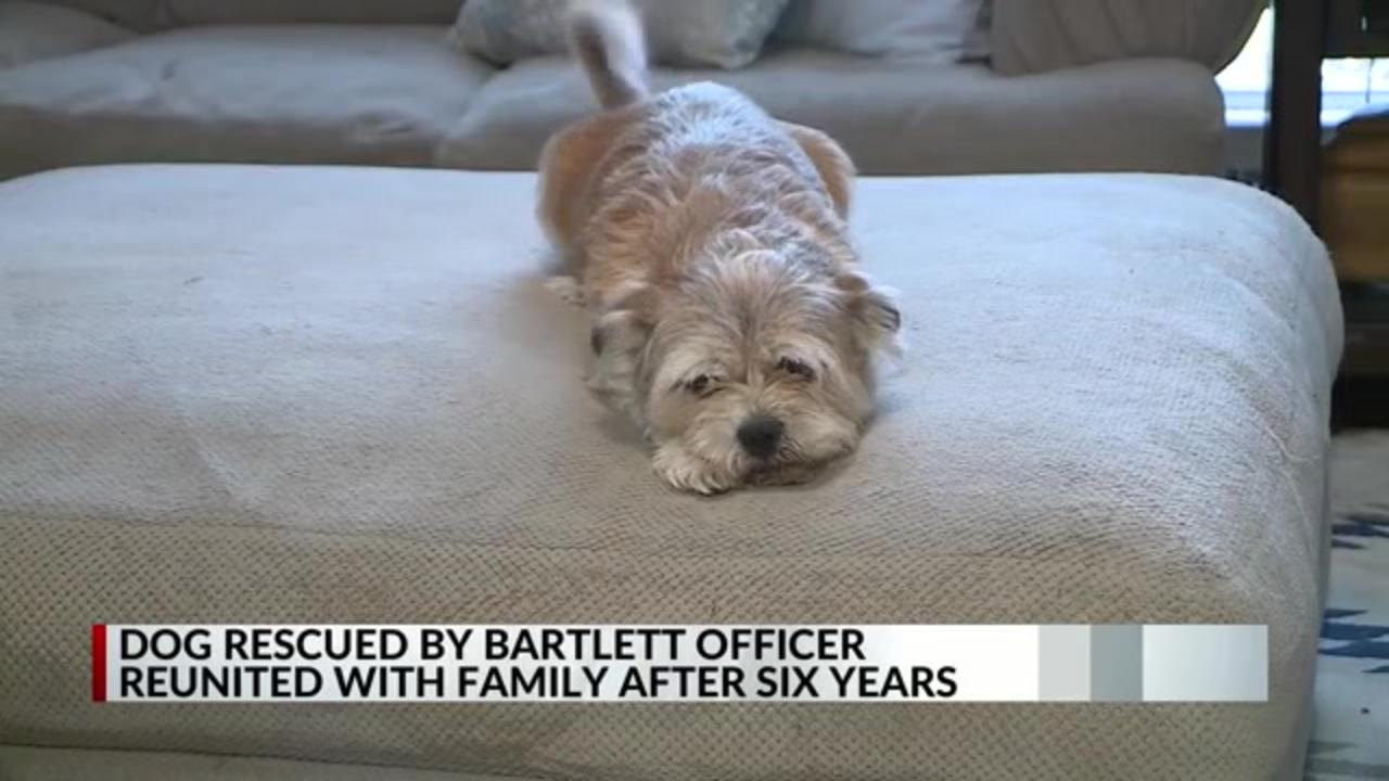 Dog rescued by Tennessee officer reunited with family six years after he disappeared