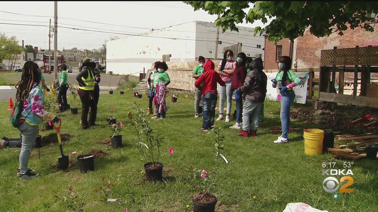 Volunteers Plant Trees In Homewood In Honor Of Earth Week