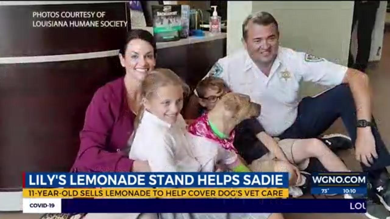 11-year-old Louisiana girl sells $2,400 in lemonade to donate to burned dog's vet care