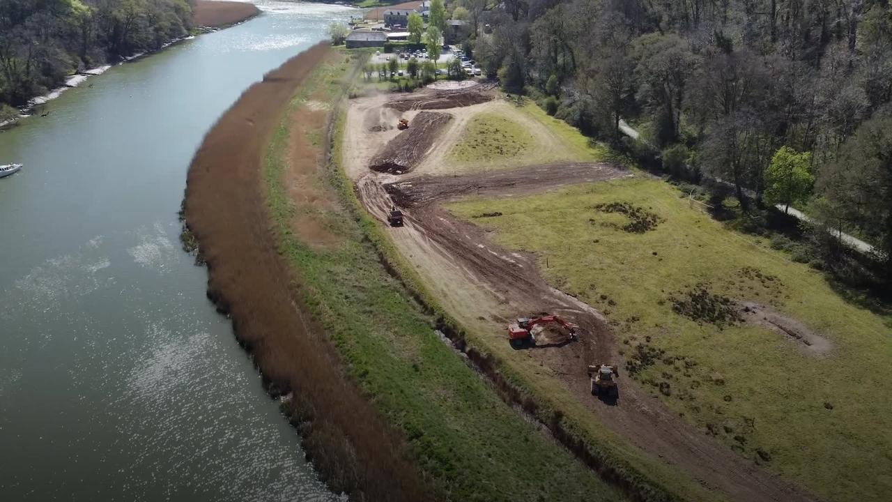 Farmland handed back to river to create wildlife-rich wetland and curb flooding