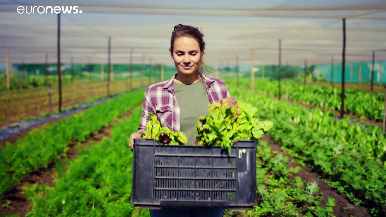 Feeding Europe: A look at sustainable farming in Italy