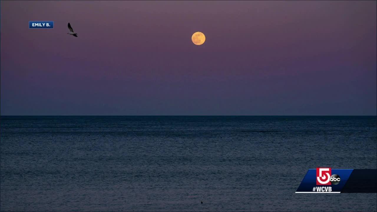 Wake Up Call: Super Pink Moon rises