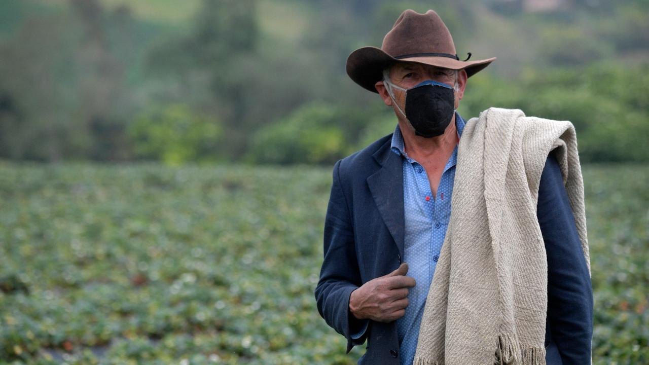 Colombia land restitution: Uphill battle for returning families