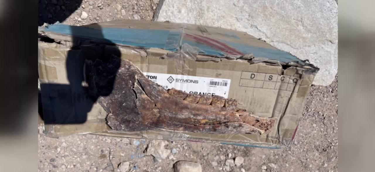 Vegas homeowner discovers more rare bones in backyard