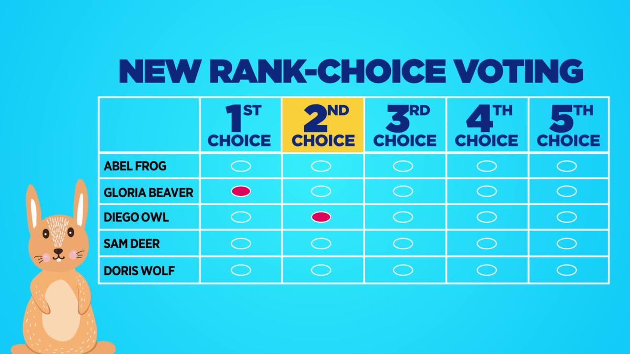 Rank Choice Voting Explained