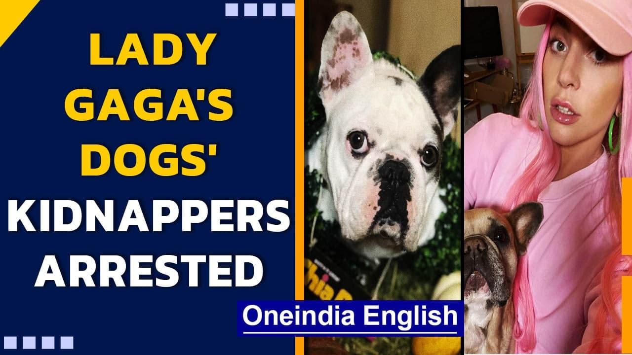 Lady Gaga's dogs' 5 alleged kidnappers arrested   All plead not guilty  Oneindia News