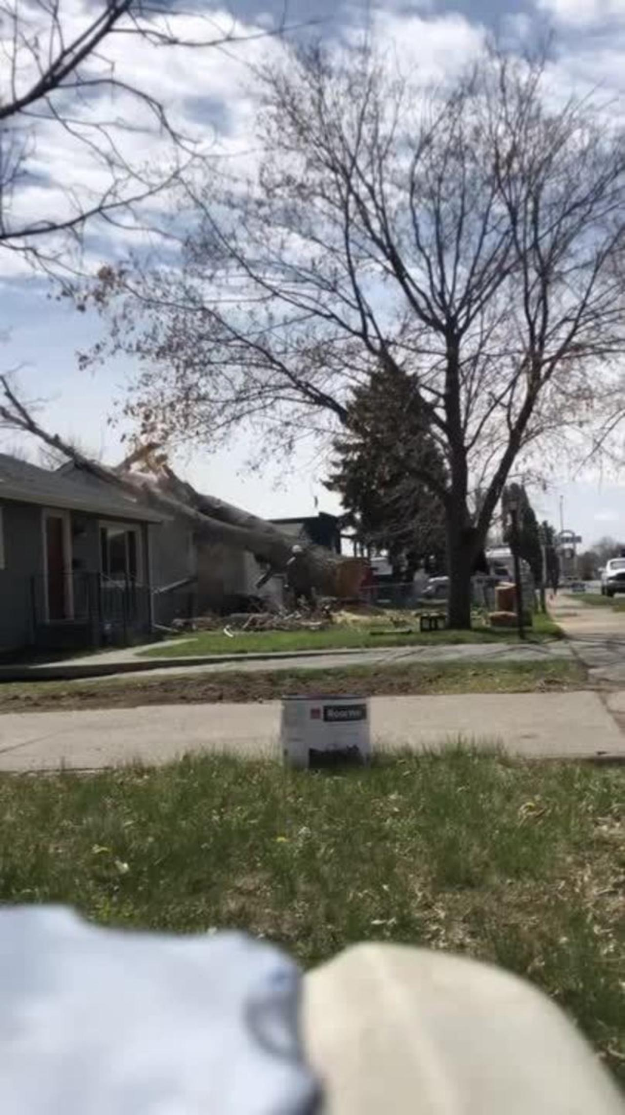 Guy Cuts Tree Which Accidentally Falls Down on the Roof of House