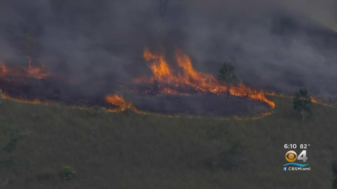 Brush Fire Continues To Burn Near Homestead