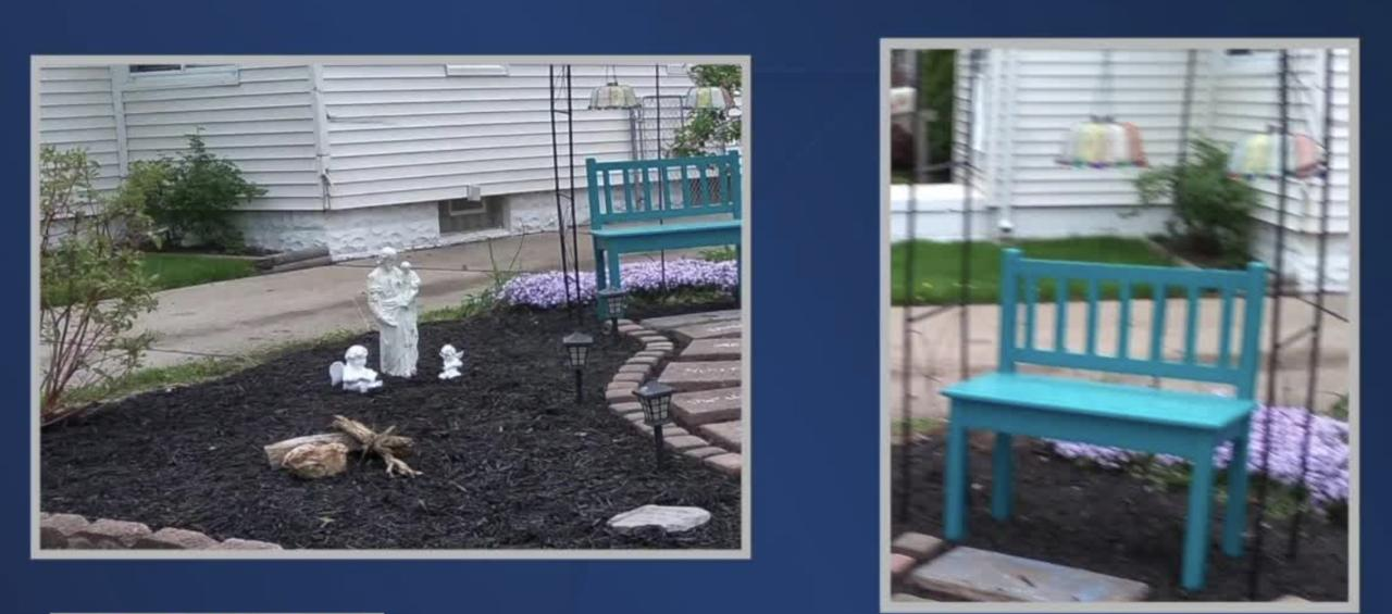 Sentimental items stolen from yard in Lincoln Park
