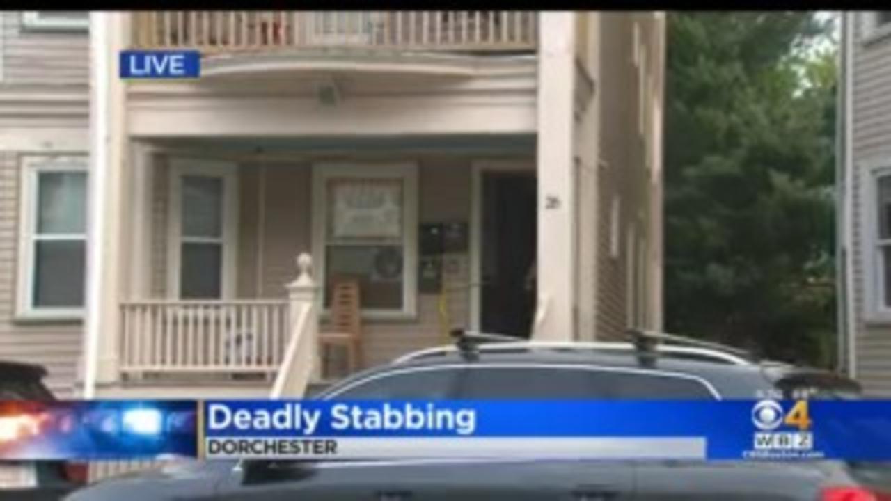 2 Women Killed, Dog Injured In Dorchester Stabbing