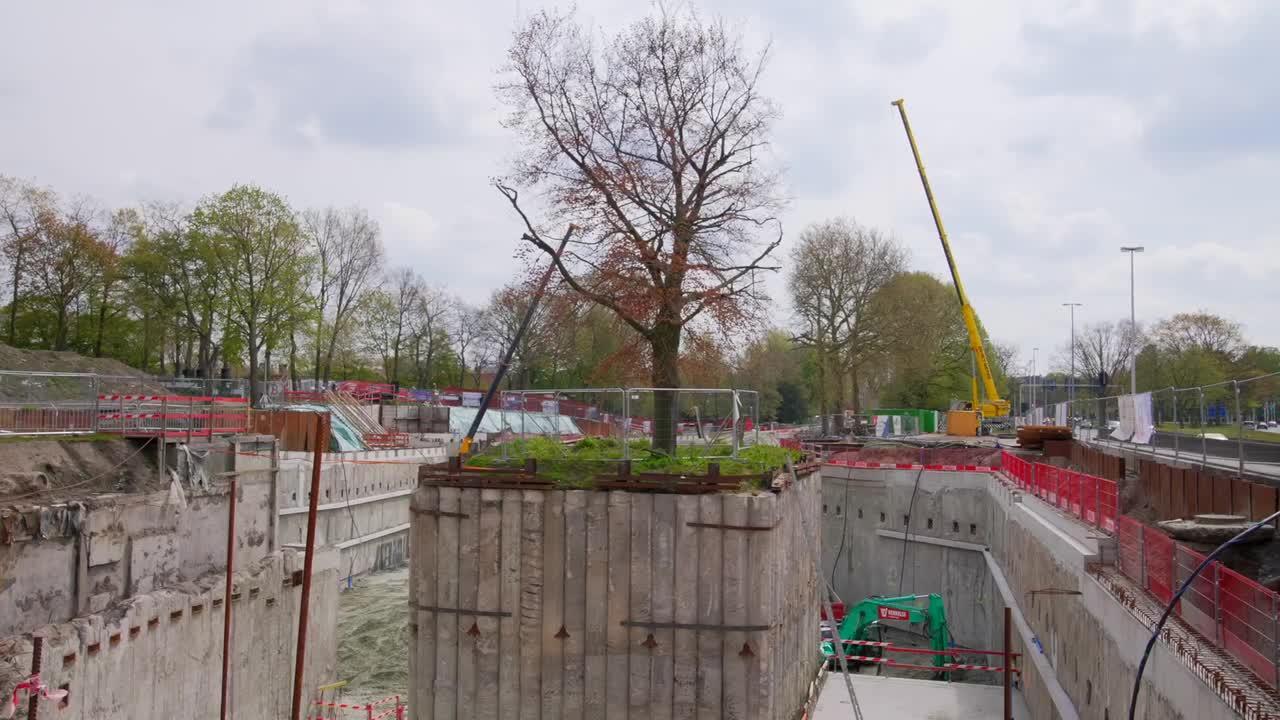Belgian builders create underground parking lot around 100-year-old tree