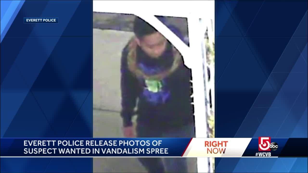 Man sought in Everett vandalism spree