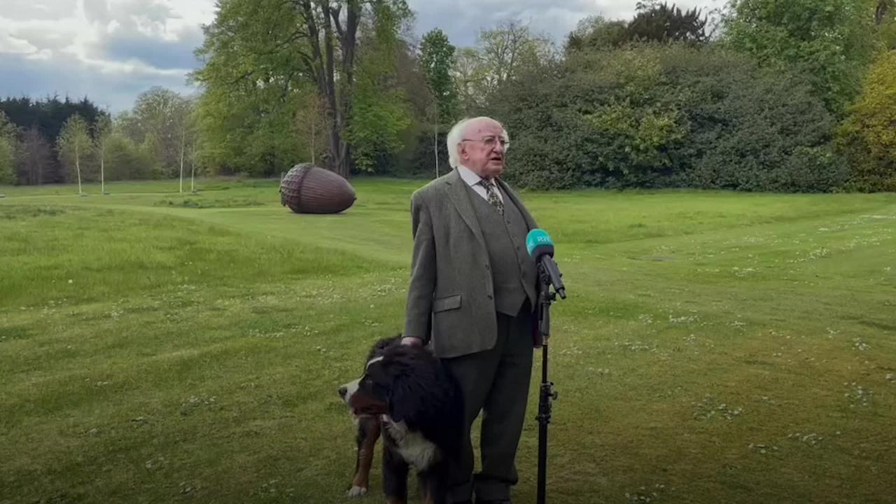 President of Ireland's pooch steals limelight in TV interview
