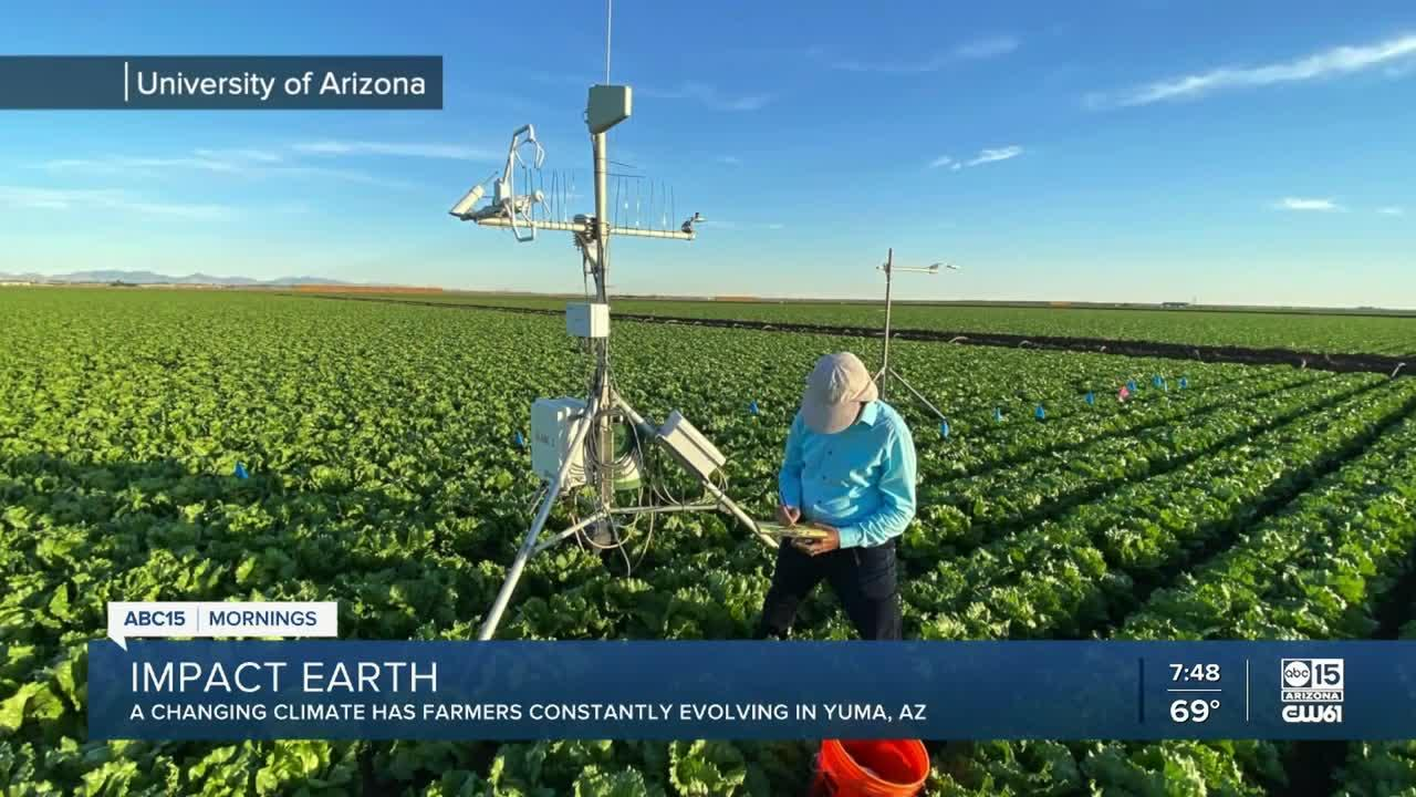 Changing climate has farmers constantly evolving in Yuma