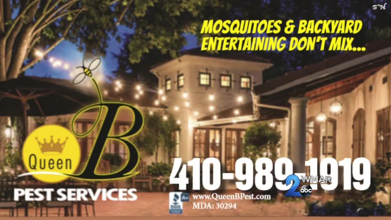 Queen B Pest Services