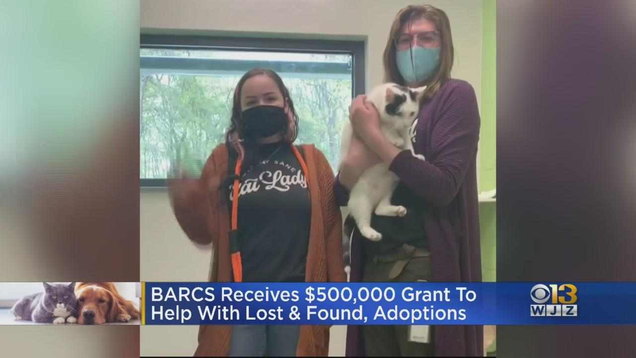 BARCS Receives $500K Grant To Help With Lost & Found Pets, Adoptions