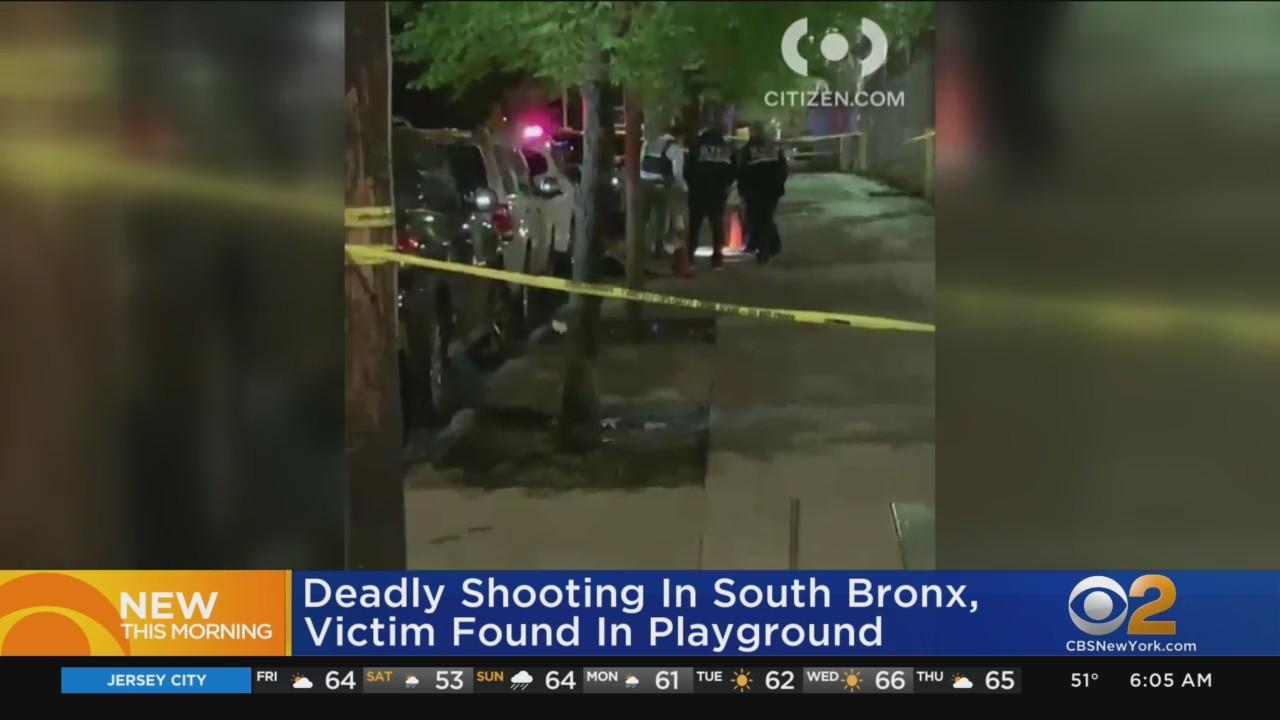 Man Shot To Death At Bronx Playground
